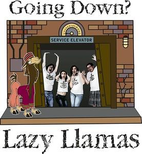 B152 - Lazy Llamas (front)