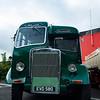 Leyland Tiger