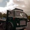 Leyland Steer