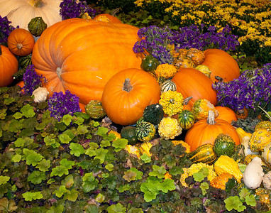 Fall arrangement jpg-2