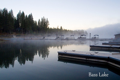 Yosemite National Park & Bass Lake: October 7, 2011