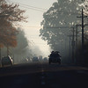 20110609 0824 Greytown mist _MG_8685a