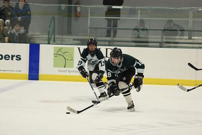 IceHockey43