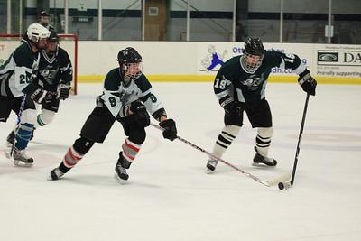 IceHockey39