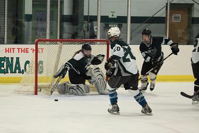 IceHockey28