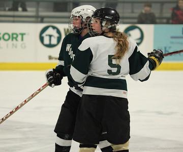 IceHockey22