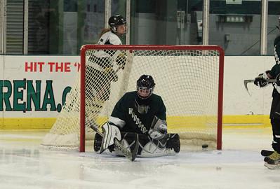 IceHockey15