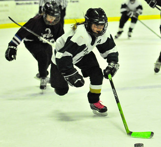 Mia Brown races to the puck. Tim Gould photo.