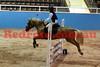 11-01-28_Vik_325A