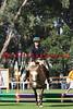 11-11-26_Mtl_0325