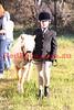 11-09-11_Taj_0538