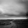 """Yellowstone National Park: Victor, 15 - """"My Life's Path"""""""