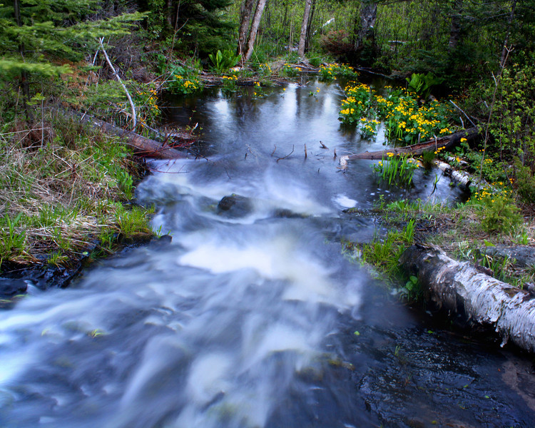 """Isle Royale National Park: Bobby, 14 - """"The Water Flows Over Me"""""""