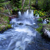 "Isle Royale National Park: Bobby, 14 - ""The Water Flows Over Me"""