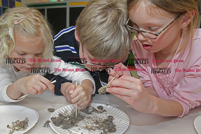 "Samantha Burr Cincinnati siblings Annika Vousianinen, 6, Logan Vousianinen, 10, and Abi Vousianinen, 8, (left to right) dissect owl pellets as part of the Imagine Nation Museum's ""Grossology"" display on Friday afternoon.(4/1/11)"