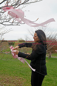 Chris Richie | Staff Sharon Lapila ties pink ribbons across Walnut Hill Park in preperation for the 2011 CT Race in the Park this Saturday in New Britain. Lapila, who works in the main office of New Britain High School, decorated the city's downtown area with pink ribbons and enlisted the help of high school volunteers for decorating the park. (5/2/11)