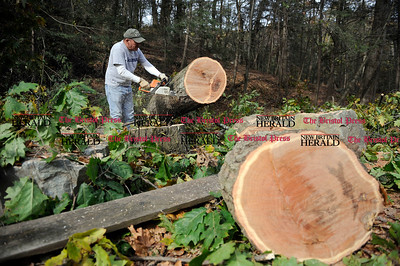 11/3/2011 Mike Orazzi | Staff Tony Dutkiewicz cuts up a large Oak Tree in Rockwell park on Thursday morning that was dropped by the weekend snow storm. Dutkiewicz plans on using the wood for next year's heating season.