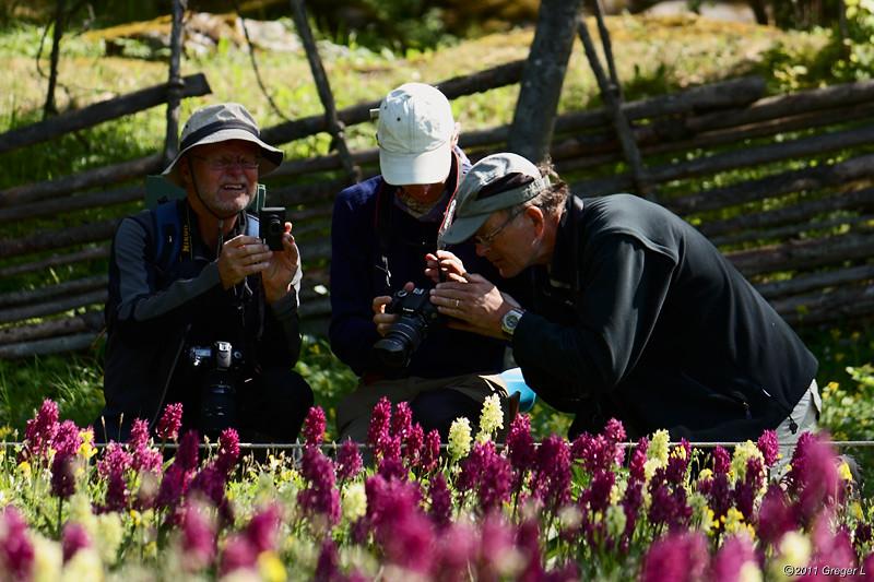 Utnyttjar digitalkamerans fördelar