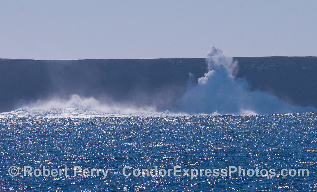 A nice size island wave hits the reef then washes up the cliff face on Frasier Point, Santa Cruz Island.