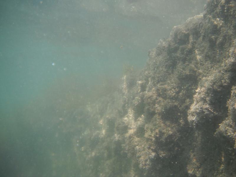 2011-01-31-11h45m59