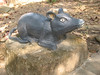 2011-02-04-09h59m01