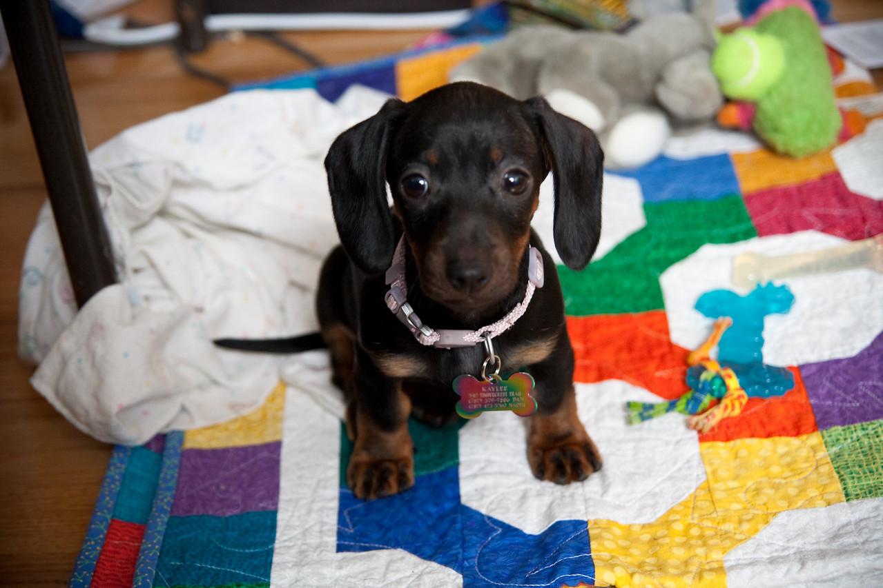 Kaylee loves her blanket