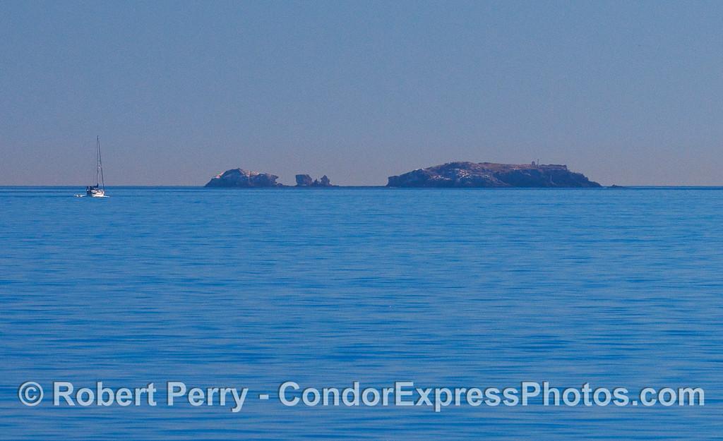 Gull Island.