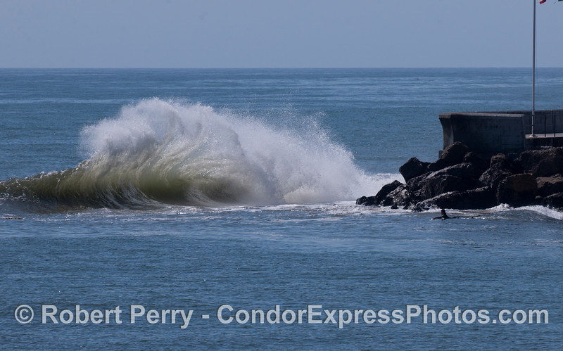 A lone surfer paddles out to meet the spectacular waves off the Santa Barbara Harbor jetty.