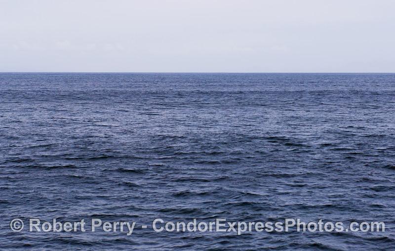 Open ocean swells.