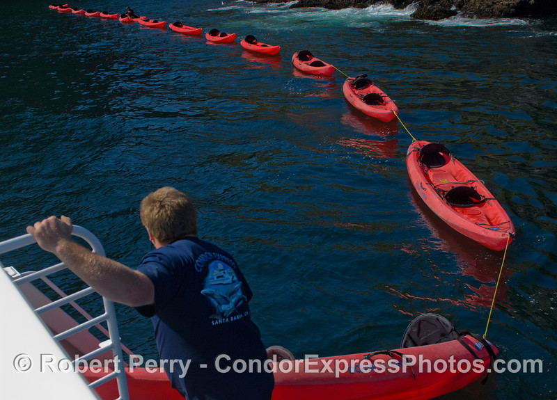 kayaks 2011 05-01 Sta Cruz Island b - 037