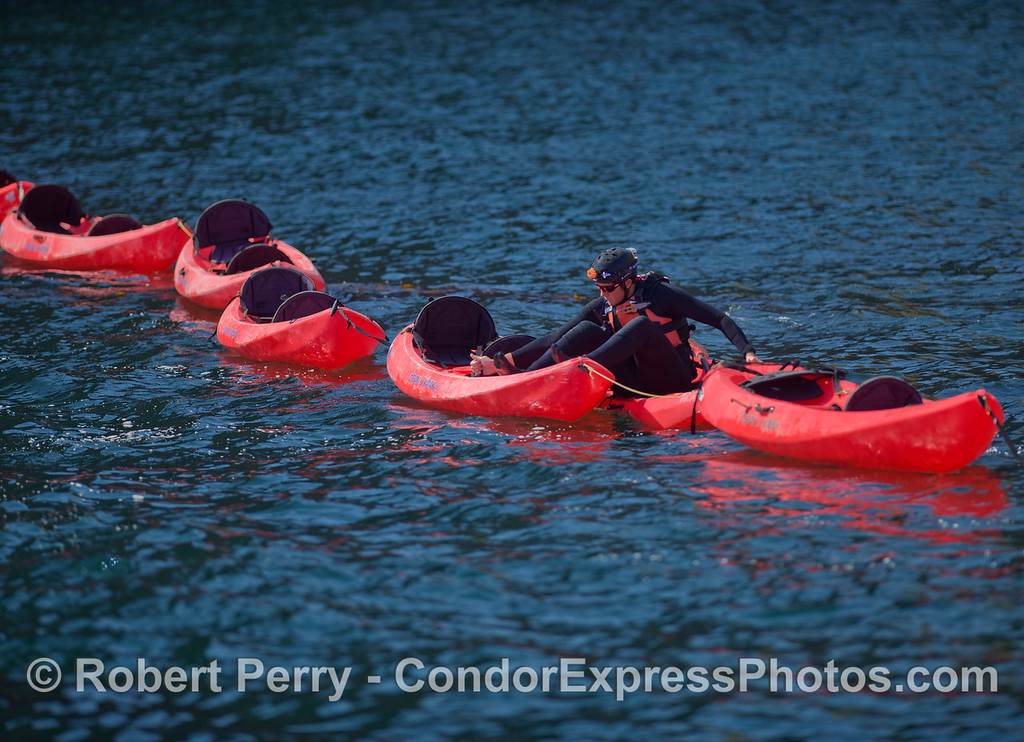 Kayaks 2011 05-01 Sta Cruz Island - 002