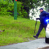 A RCMP PSD tries to pick-up a track at the scene of an break and enter Thursday afternoon in the 100 block of Carney Street. No track of the suspect(s) was found. Citizen photo by Brent Braaten     June 23 2011