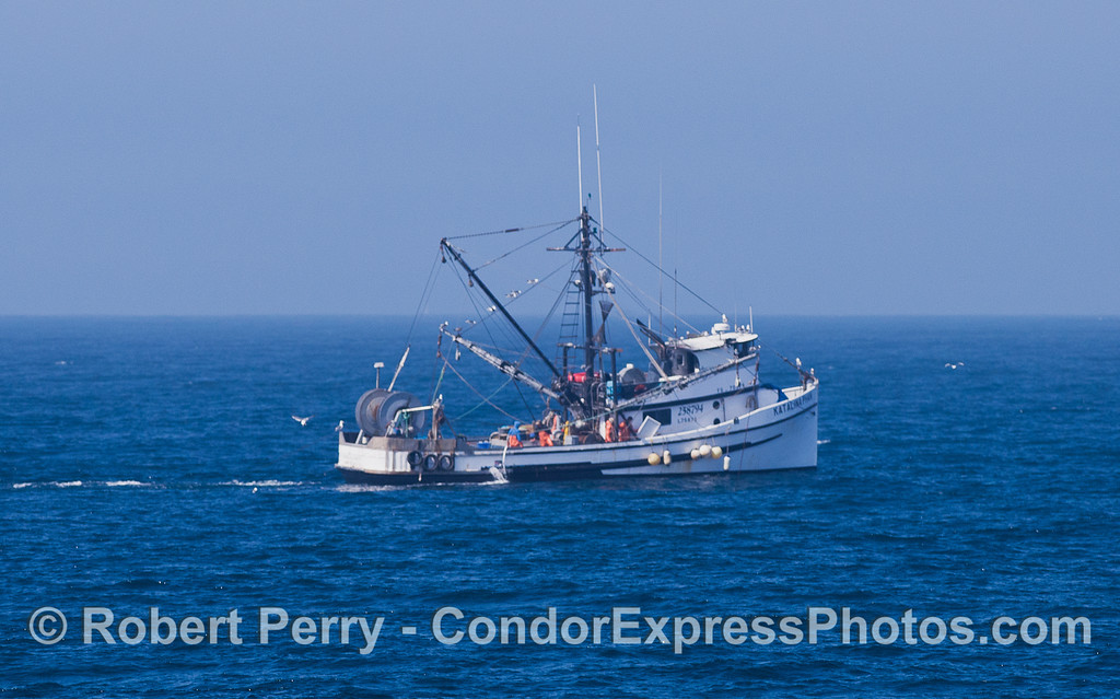 Katalina Phan commercial fishing vessel.