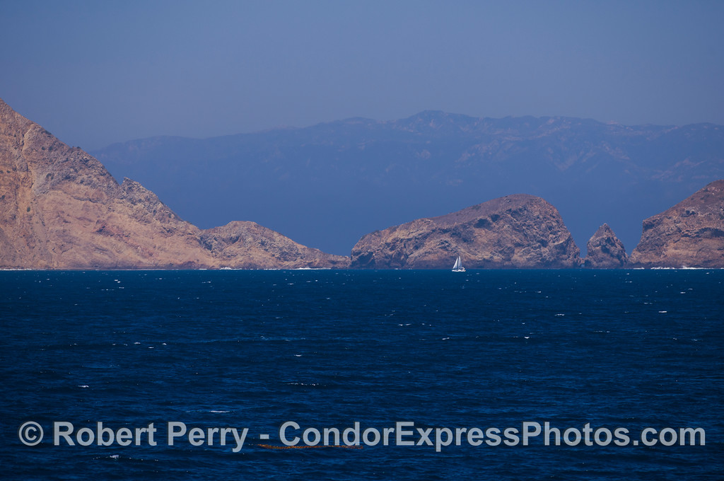 Sailboat - south side Middle Anacapa Isalnd.  The Santa Ynez mountains behind Santa Barbara are visible in the back.