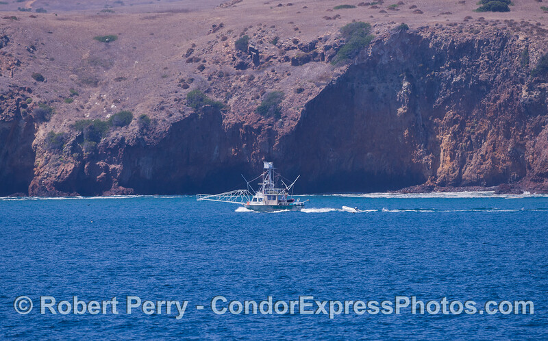 "An ""old school"" broadbill swordfish plankboat off the east end of Santa Cruz Island."