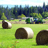 A farmer bails up cut hay along Sintich road Wednesday afternoon.  Citizen photo by Brent Braaten     Aug 31 2011