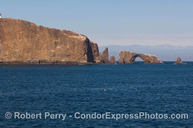 East Anacapa Island, Arch Rock...south side.