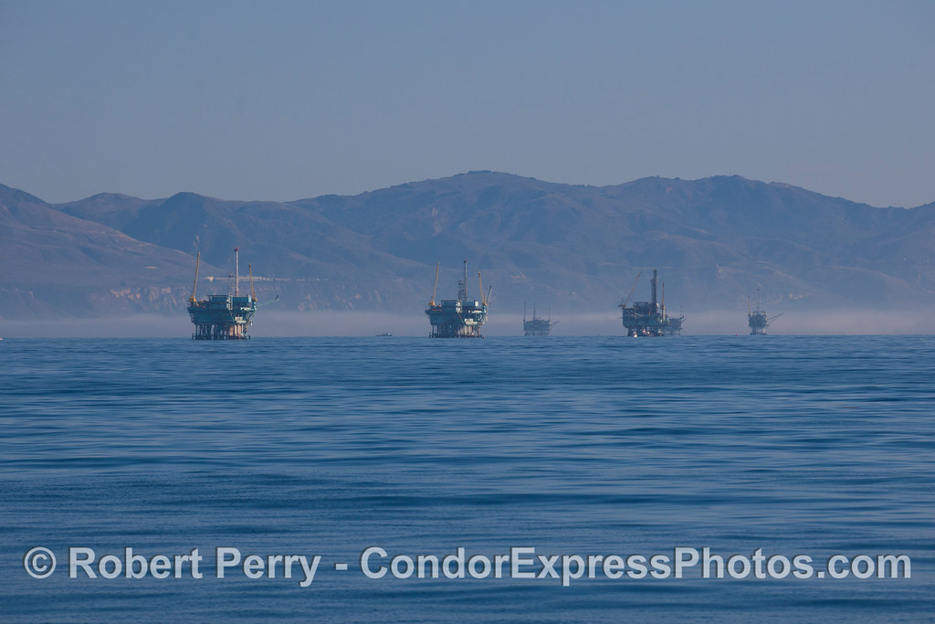 The oil platforms offshore (platforms B, A, Hillhouse, Henry and Hogan) are seen in the morning light.