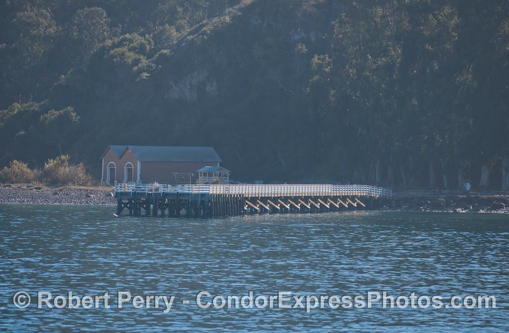 Prisoners Harbor - Sta Cruz Island.