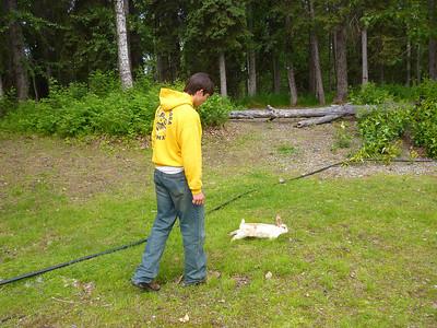 2011-06-29 Alaska Day 2