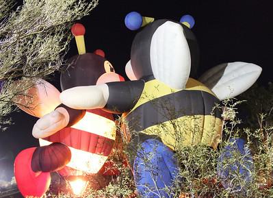 January 8 - Cave Creek Balloon Festival