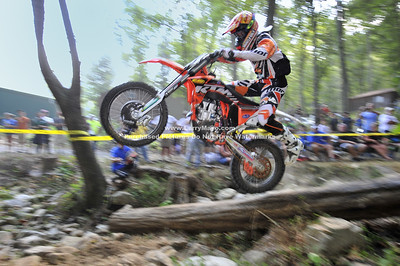 2011 RACES