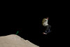 Ben flies by in the dark at the terrain park.