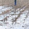 Tribune-Star/Jim Avelis<br /> Waiting game: Phil Carter looks over land he farms near the Eel River bottoms. He said that he could be working some of the sandy soil in a week if there was no more rain.