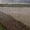 Tribune-Star/Jim Avelis<br /> Under a cloud: Wind blown debris stacks up along Louisville Road east of Blackhawk Thursday afternoon. High water floats cornstalks and other field debris then winds wash it together forming a mat that farmers will have to deal with once the fields dry.