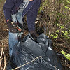 Tribune-Star/Jim Avelis<br /> Just starting: Jared Frink loads an old beer bottle into his nearly full trashbag during the Saturday morning cleanup of property on the west bank of the Wabash River south of Dresser.