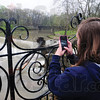 Tribune-Star/Rachel Keyes<br /> Future flooding: Sara Brown takes a snap shot of Mill Dam and says that co-workers are worried about flooding.