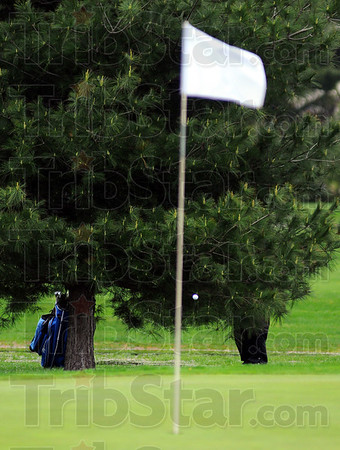 Tribune-Star/Jim Avelis<br /> Tough lie: Ryan Sneddon does a good job of getting his shot out under the branches of a pine tree near the first green.