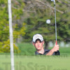 Tribune-Star/Jim Avelis<br /> Chip shot: Northviews' Larry Knight watches his chip shot bounce toward the cup on the first green at Forest Park. The Knights and Braves squared off in a dual  match Wednesday afternoon.