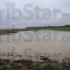 Tribune-Star/Rachel Keyes<br /> Swampy fields: A flooded field near the Eel River in Clay County.